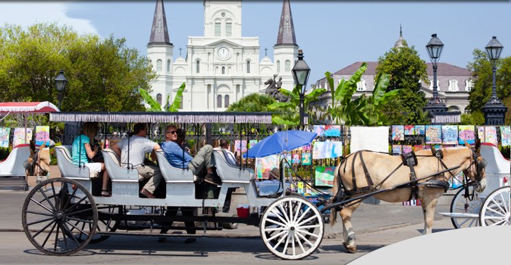 New Orlean mule drawn carriage